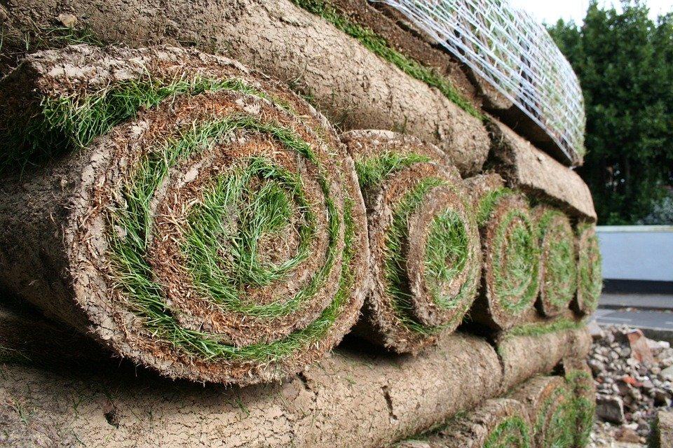 Aménager un espace vert avec la pose de gazon en rouleau, facile et pratique